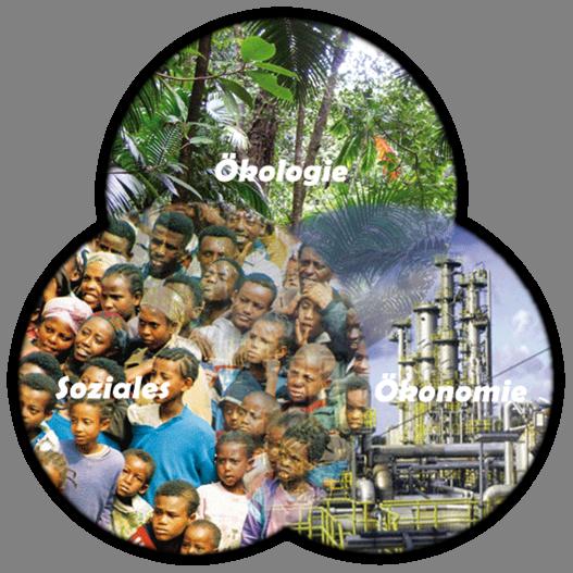 3-aspekte-der-nachhaltigkeit